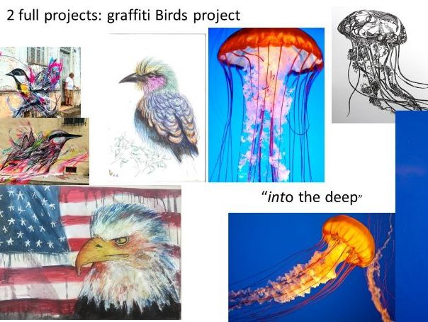 "2 full art projects  ""Graffiti Bird design"" and ""Into the Deep"""