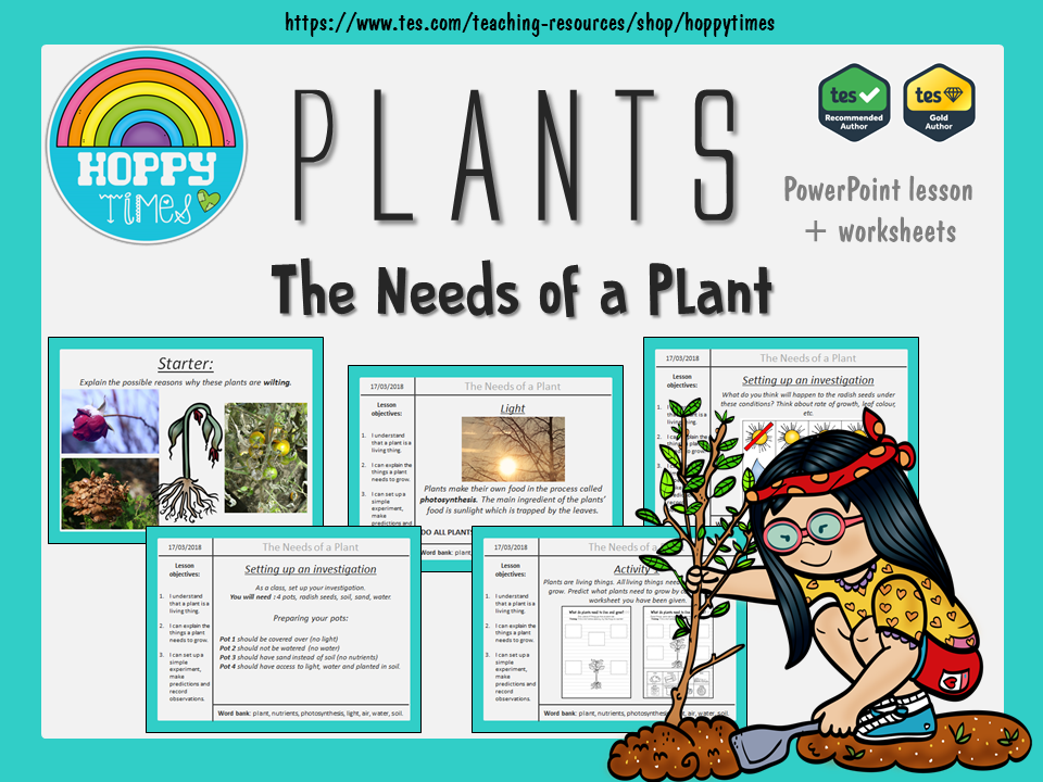 Needs of a Plant Lesson