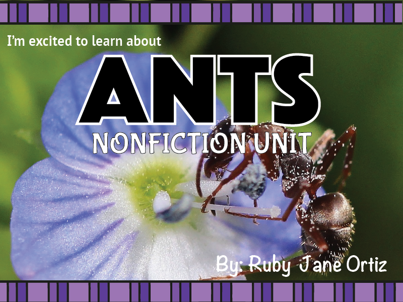 Ant Nonfiction Unit