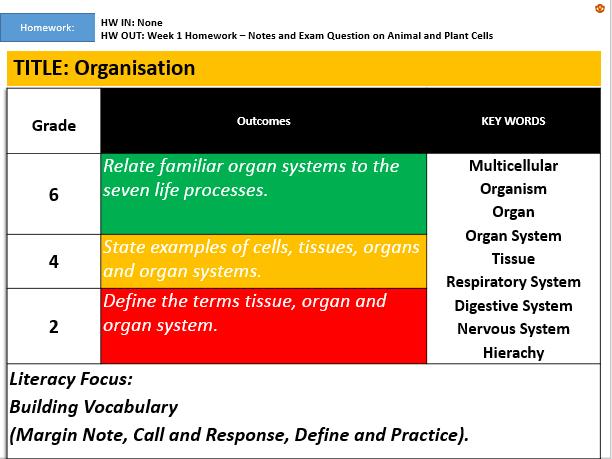 KS3: Organisation