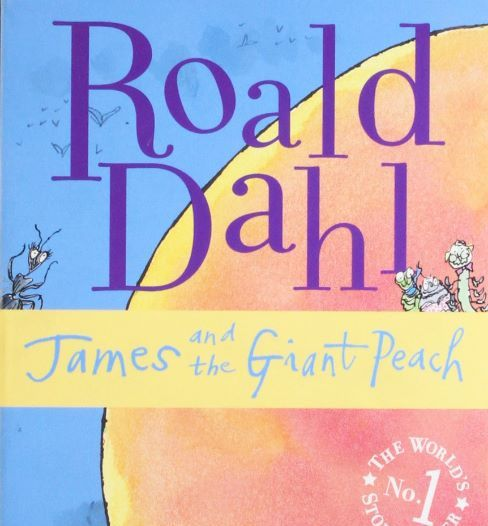 James and the Giant Peach by Roald Dahl workbook (differentiated)