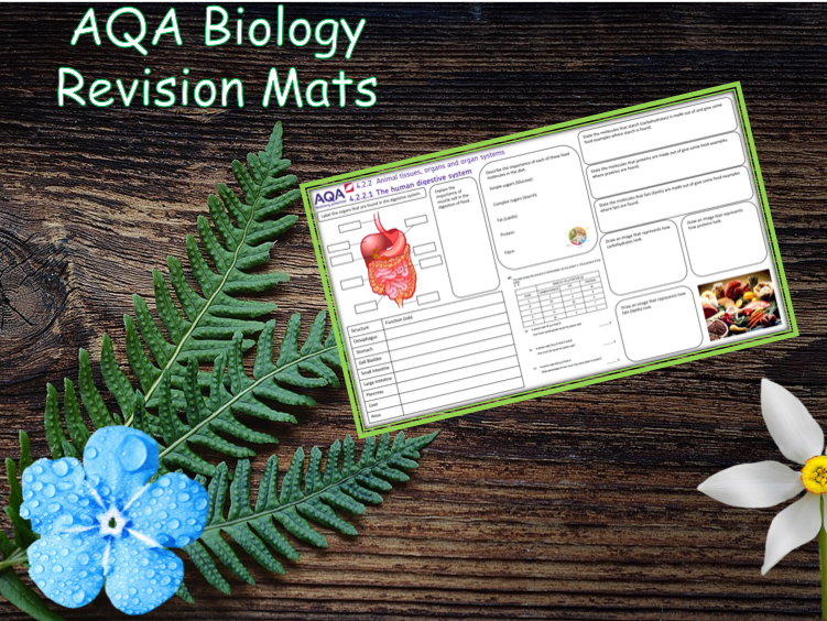4.2.2.1 The Human Digestive System - NEW AQA Trilogy (Biology) Revision with Answers