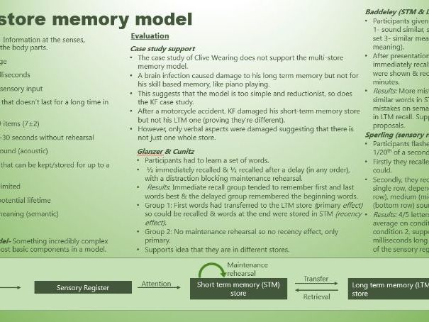 AQA A level Psychology, memory revision powerpoint