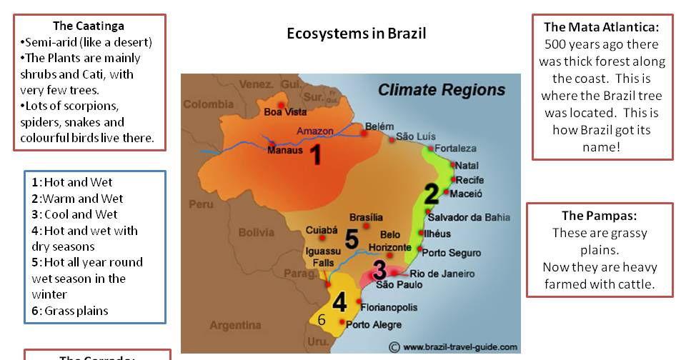 Brazil's Ecosystems