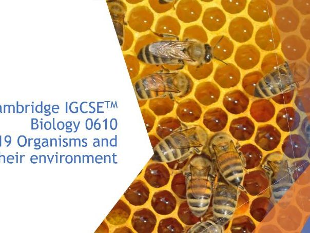 Cambridge IGCSE Biology 0610, 19 Organisms and their environment