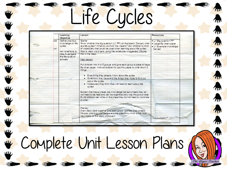 Animal Life Cycles Complete Unit Lesson Plans