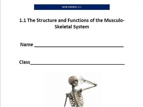 GCSE PE Edexcel (9-1) Musculo-Skeletal System Pupil Booklet
