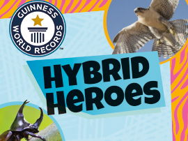 Guinness World Records - Hybrid Heroes