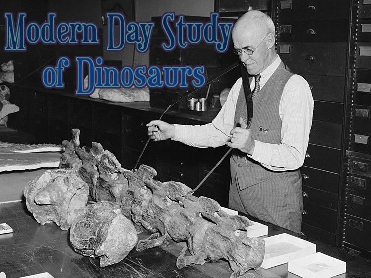 Study of Dinosaurs Audiobook & Classroom Activity