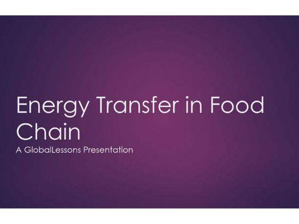 Energy Transfer In The Food Chain - FULL