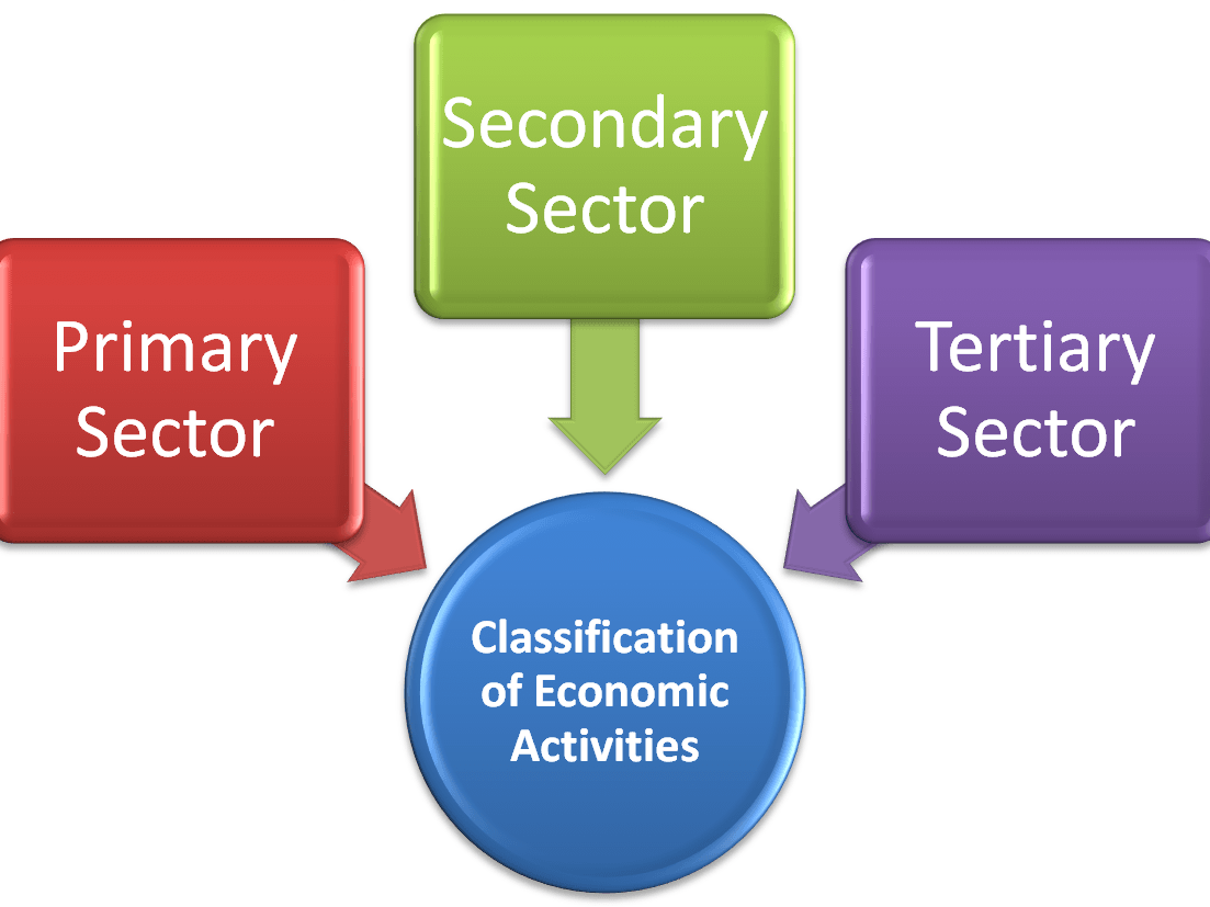 Economic Activities- Revision Notes