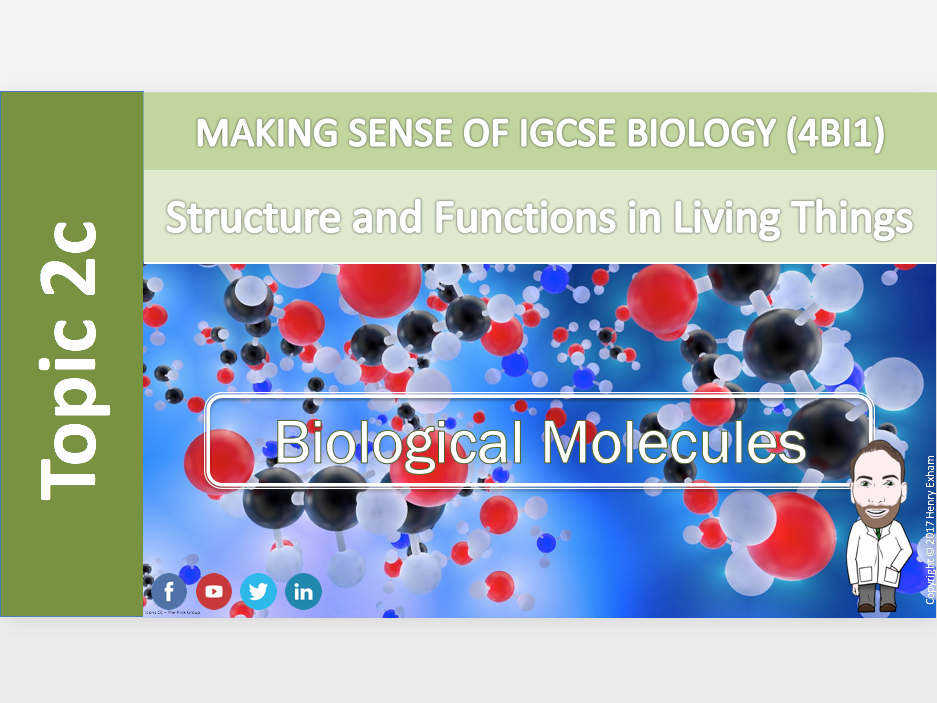 IGCSE Biology 9-1 - 2c Biological Molecules