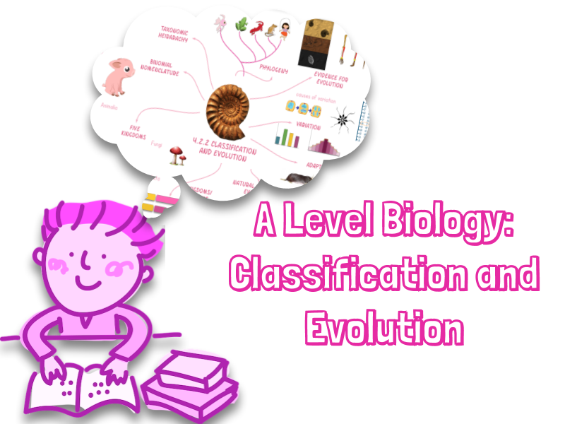 A level Biology Classification and Evolution