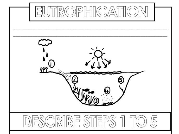 IGCSE Biology Eutrophication and sewage worksheets GCSE Human Influences on the environment