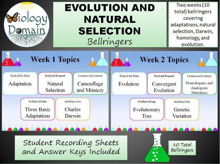Two Weeks of Evolution and Natural Selection Bell Ringers Warm Ups with Answer Key