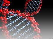 NEW AQA AS Biology Chapter 9 Bundle