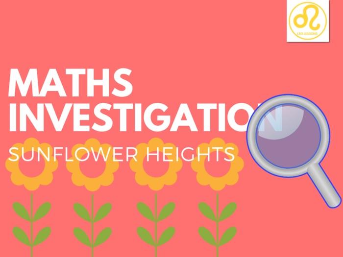 Maths Investigation sunflower
