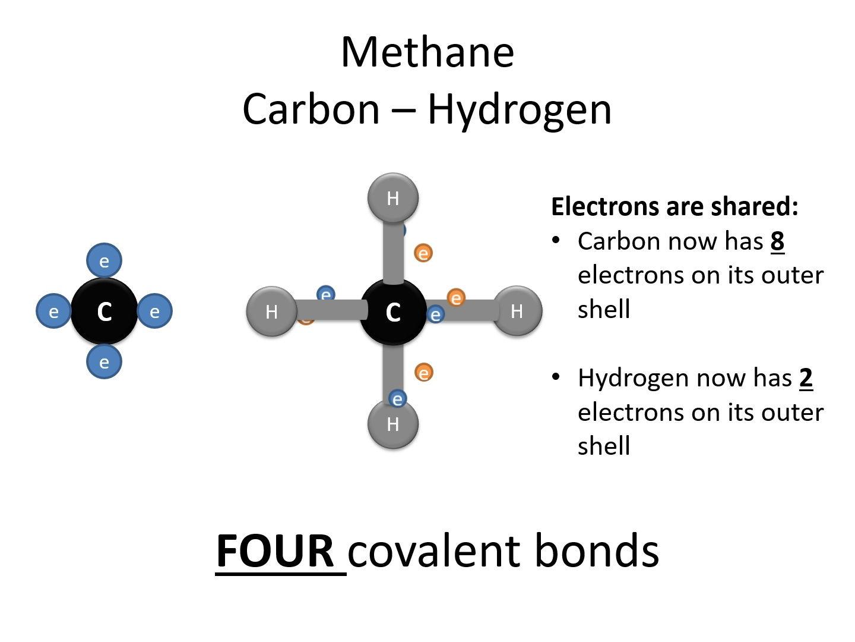 2.1.2 Biological Molecules