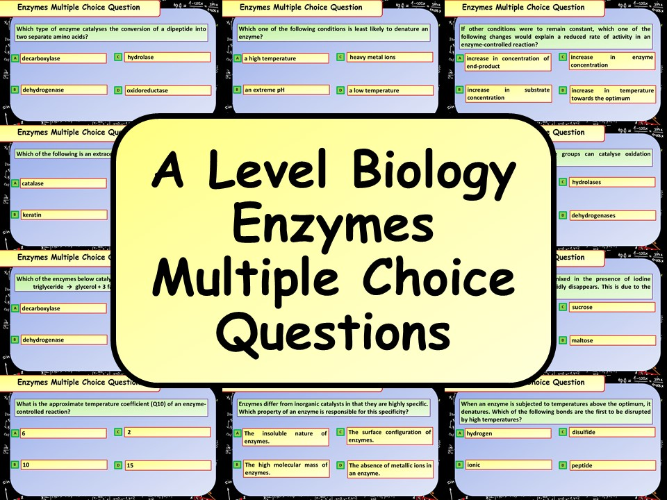 FREE A Level Biology Enzymes Multiple Choice Questions
