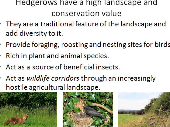 Species diversity , farming methods, hedgerows