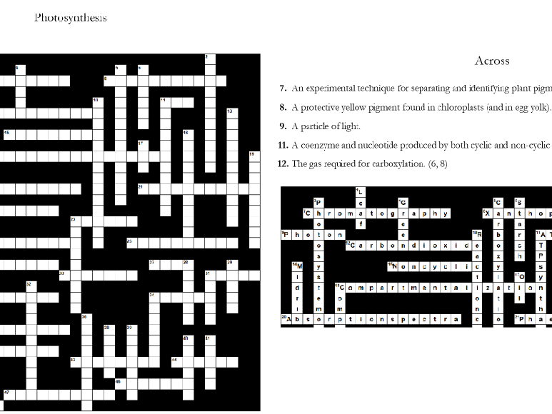 6. Photosynthesis Crossword: Text Documents and Interactive Webpages