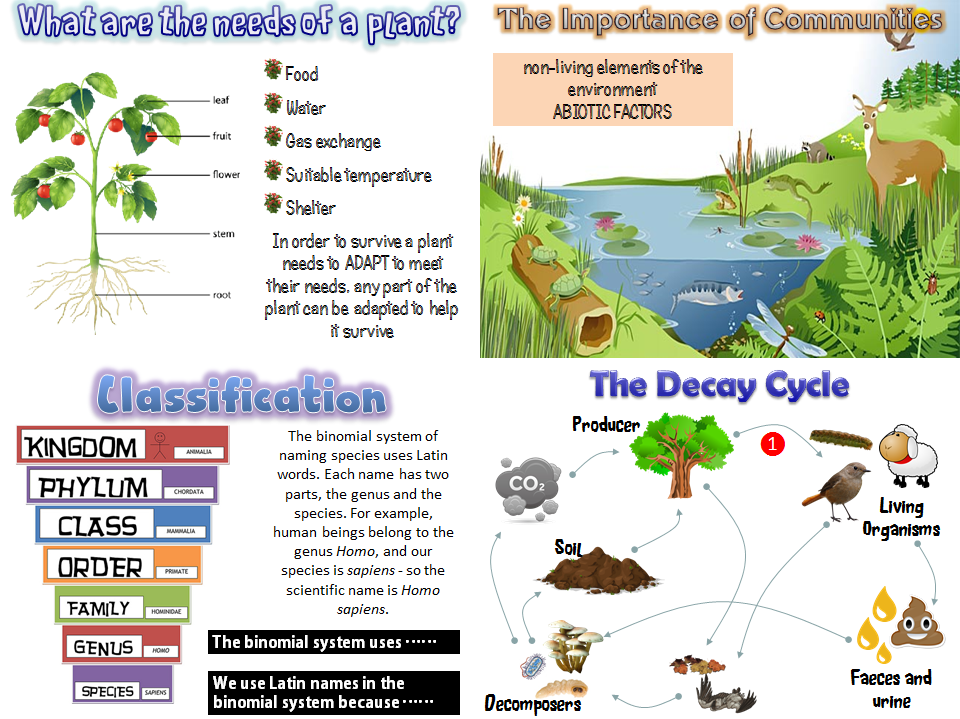 New AQA 2016 Biology resources