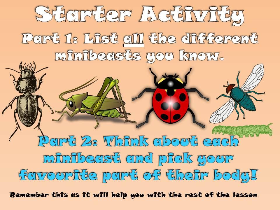 KS1 Minibeast Cross-Curricular Literacy Pack