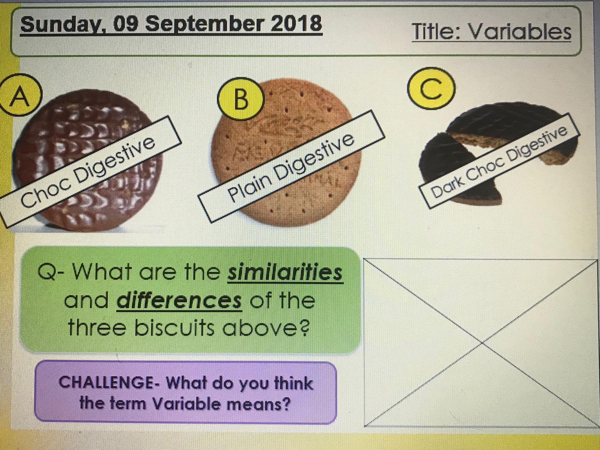 Types of Variables KS3