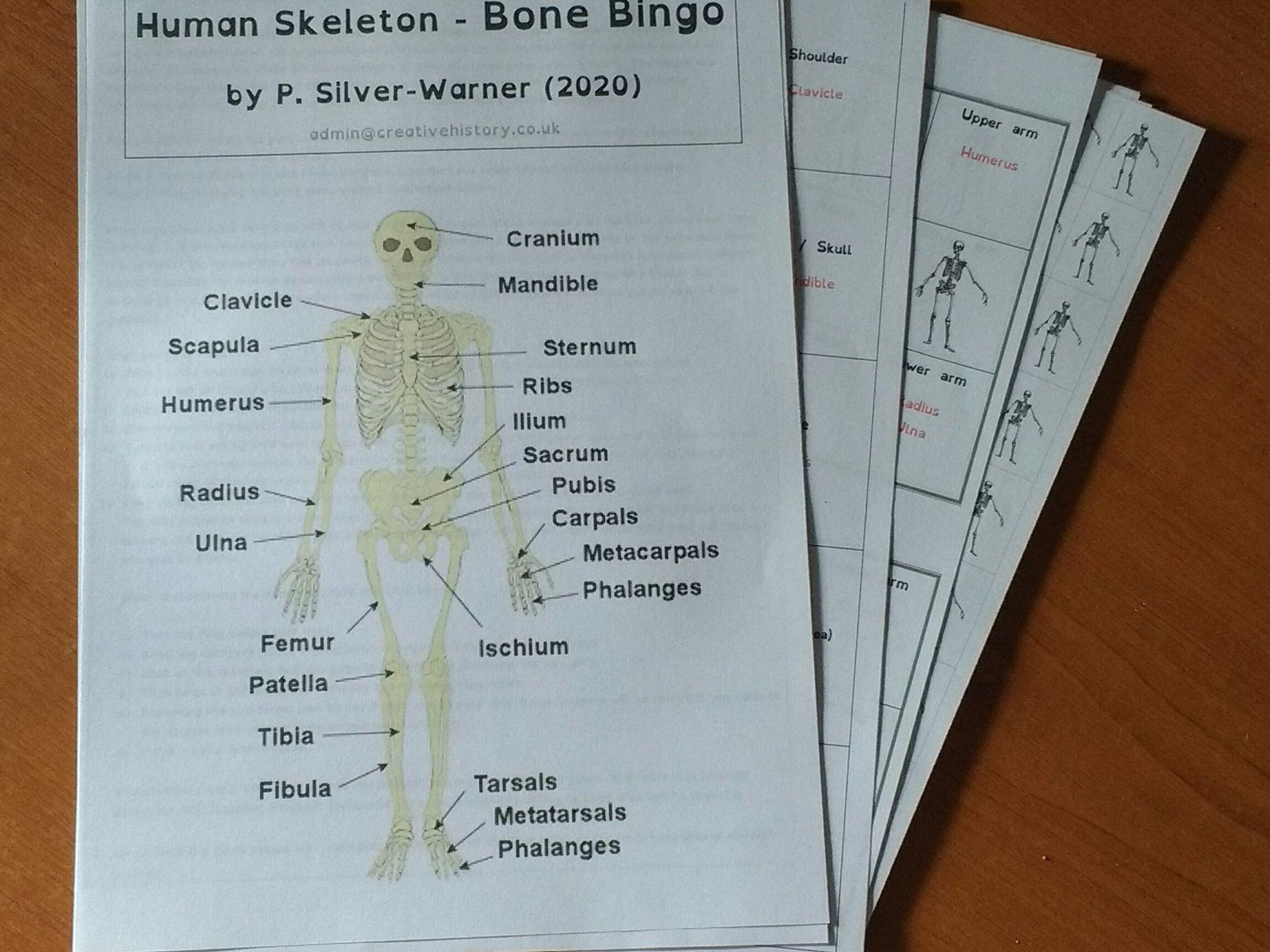 Bone Bingo (Solo or Group)