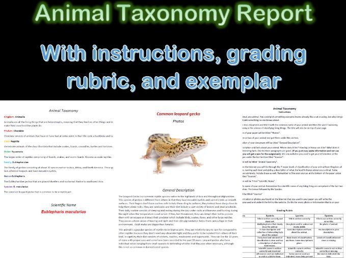 Animal Taxonomy Report (For lessons on classifying organisms) Distance Learning