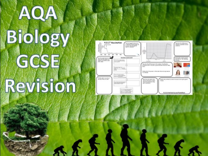 4.3 Human Defences, Vaccines and Drug Trialling - NEW AQA Trilogy (Biology) Revision