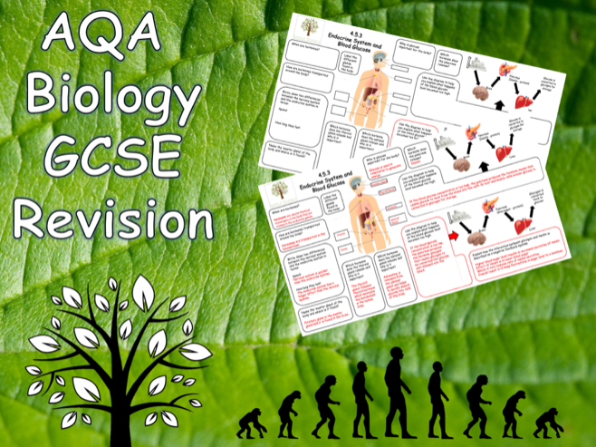 4.5.3 Hormonal Coordination - AQA Science Trilogy (Biology) Revision with Answers