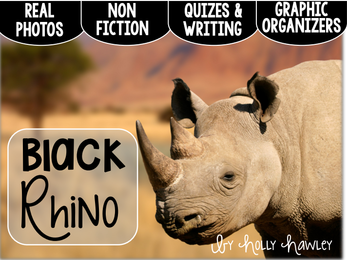 Black Rhinoceros-A Research Project-UK Version