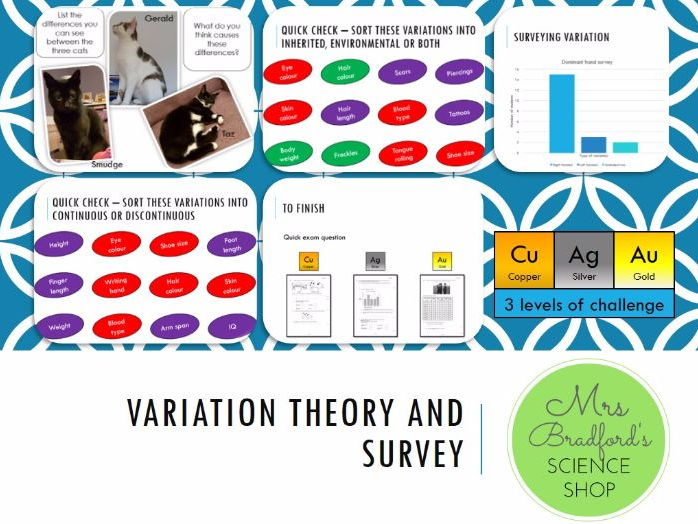 Variation - Surveying and Theory