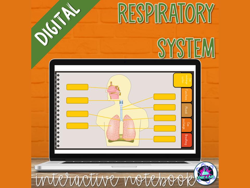 Respiratory System Digital Interactive Notebook