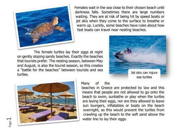 Sea turtles & tortoises-KS2-10 reading texts