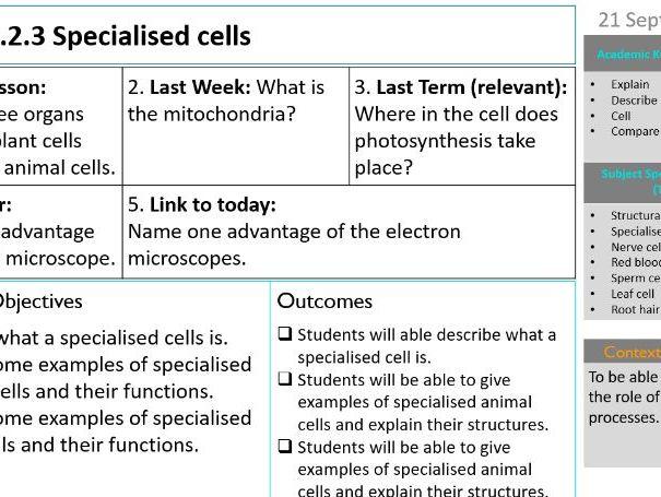 KS3 specialized cells