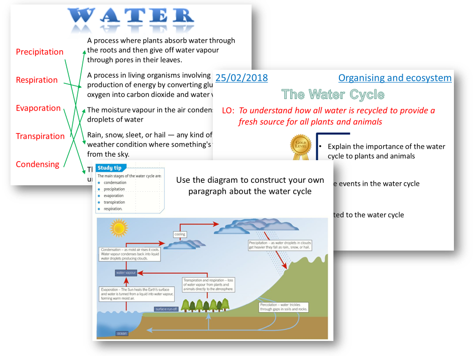 The Water Cycle - AQA 2016 Biology