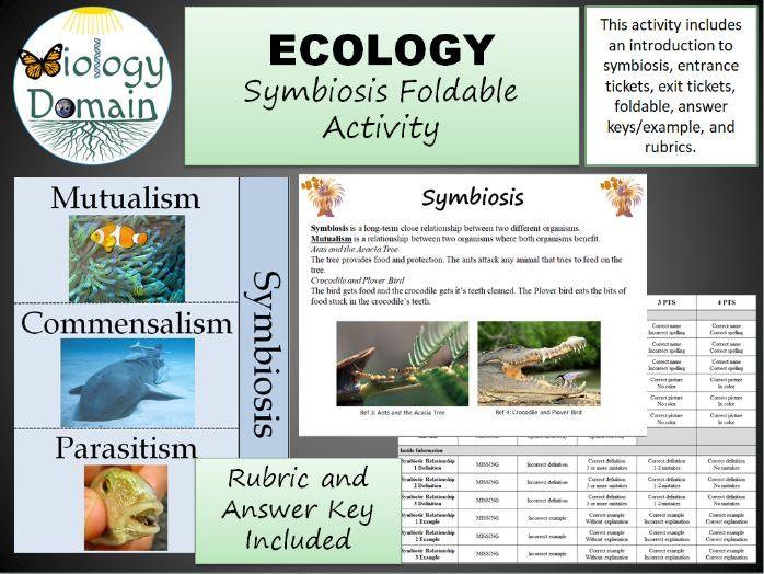 Ecology: Symbiosis Foldable