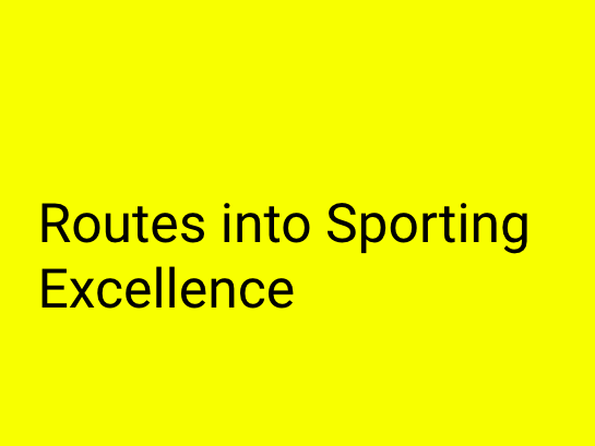 A-Level PE (OCR): Routes into Sporting Excellence