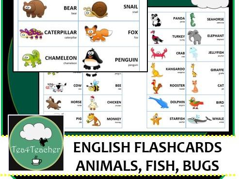 English Language Flashcards - Animals, Bugs & Sea Creatures