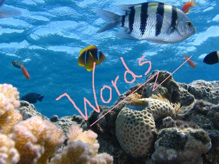 Under the Sea - Word Gaps in a Picture + Word Bank