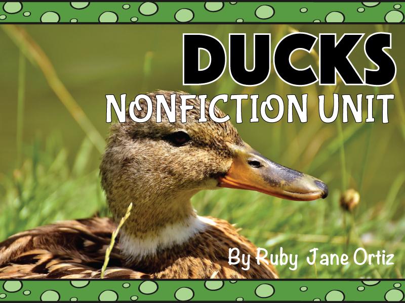 Duck Nonfiction Unit