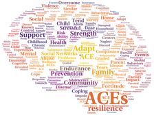 An introduction to Adverse Childhood Experiences (ACE's)