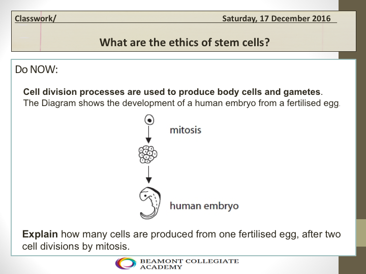 What are the ethics of stem cells