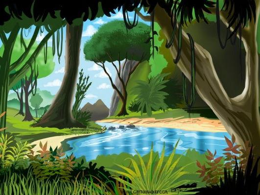 Rainforest plant adaptations