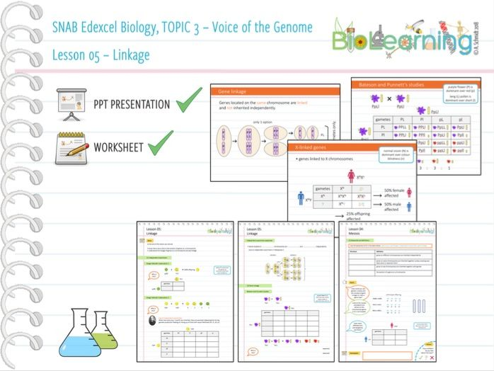 SNAB Biology Topic 3 -  Lesson 05 (Linkage) - WS and PPT