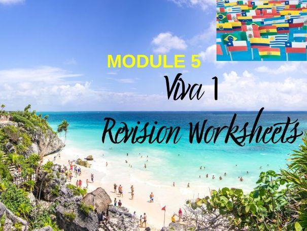 Spanish Viva 1 Module 5 Worksheets