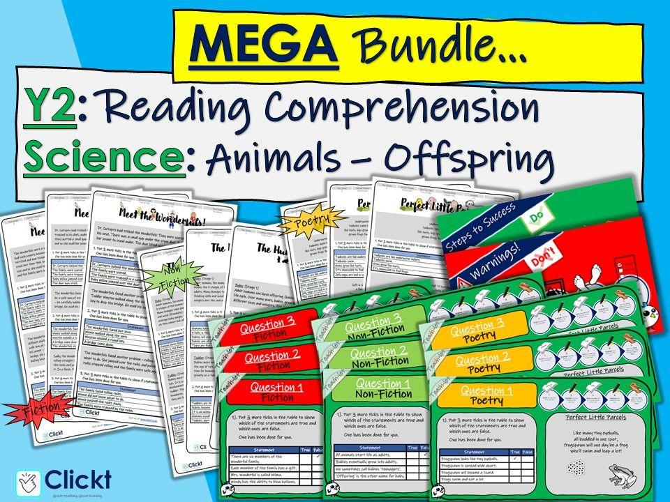Year 2 Reading Comprehension MEGA-BUNDLE: Science: Animals, including humans: Offspring