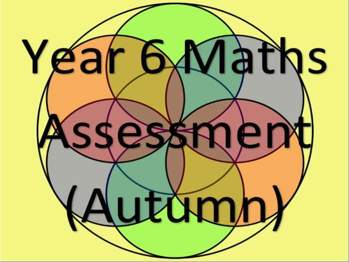 Year 6 Maths Assessment and Tracking (AUTUMN)